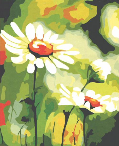 «Ромашки»Menglei (Premium)<br>Ромашки<br><br>Артикул: MG314<br>Основа: Холст<br>Сложность: средние<br>Размер: 40x50 см<br>Количество цветов: 25<br>Техника рисования: Без смешивания красок