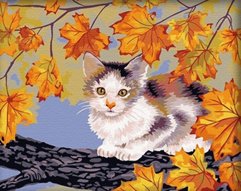 Картина по номерам «Кошка на клёне»Menglei (Premium)<br><br><br>Артикул: MG021<br>Основа: Холст<br>Сложность: сложные<br>Размер: 40x50 см<br>Количество цветов: 26<br>Техника рисования: Без смешивания красок