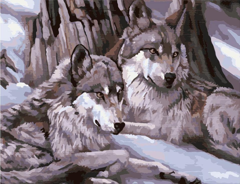 Картина по номерам «Серые волки»Menglei (Premium)<br>Картина по номерам «Серые волки», написанная в спокойных тонах, украсит и рабочий кабинет, и гостиную, и загородный дом. Преданные и верные, волки будут своеобразной «охраной», если картину повесить в прихожей. Сюжет со свободолюбивыми хищниками может быт...<br><br>Артикул: MMC007<br>Основа: Холст<br>Сложность: сложные<br>Размер: 50x65 см<br>Количество цветов: 27<br>Техника рисования: Без смешивания красок