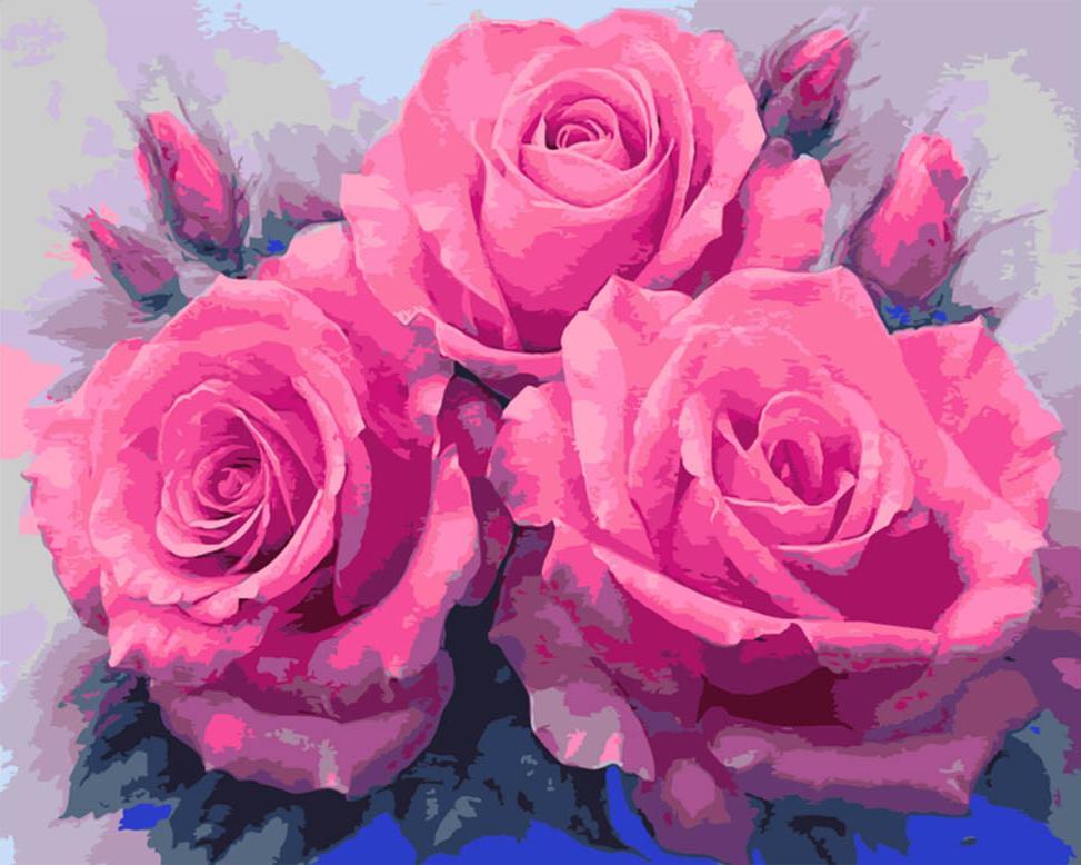 картина по номерам прекрасные розы