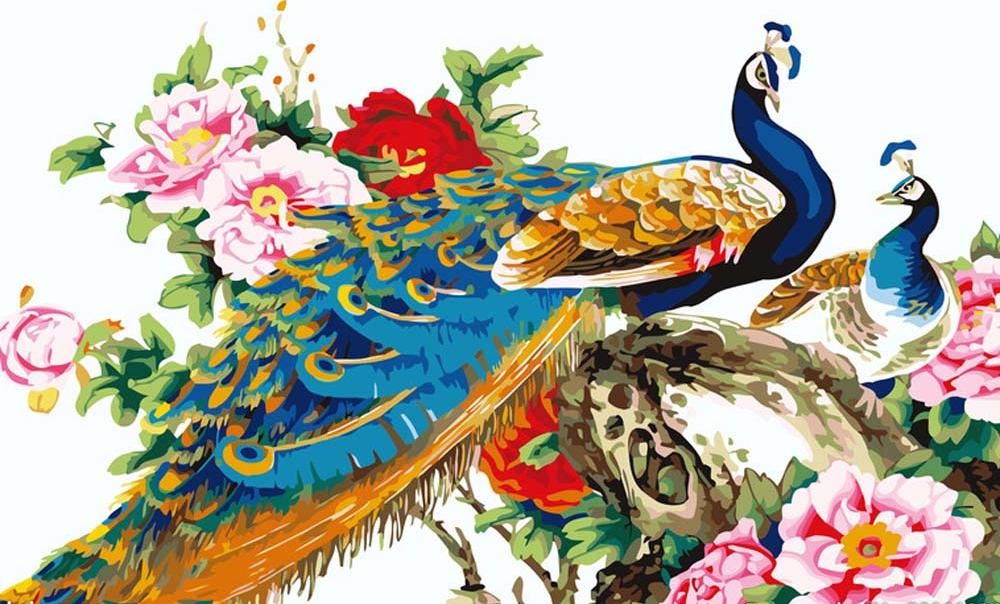 «Китайские павлины»Раскраски по номерам Menglei (Standart)<br><br><br>Артикул: MG110_S<br>Основа: Холст<br>Сложность: сложные<br>Размер: 40x50 см<br>Количество цветов: 25<br>Техника рисования: Без смешивания красок