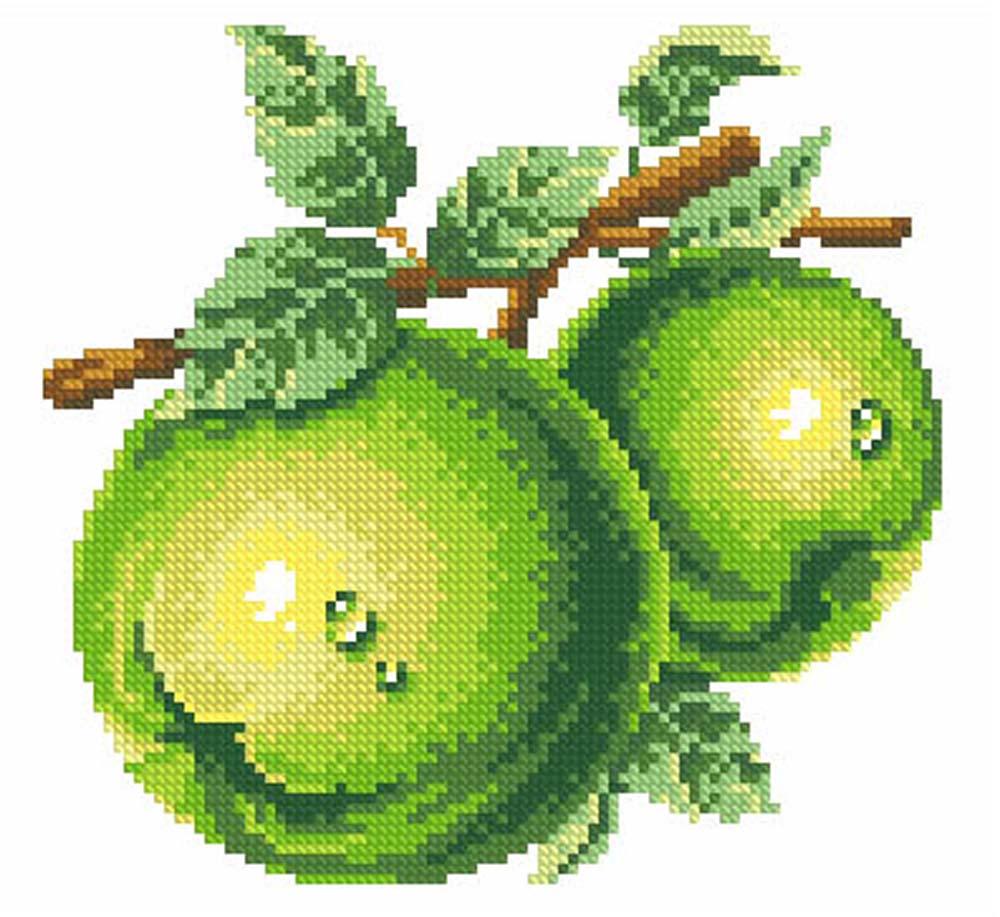Стразы «Зеленые яблоки»Алмазная Живопись<br>Картины стразами бренда «Алмазная Живопись» это:<br><br>четко пропечатанная символьная схема;<br>качественный клеевой слой по всей поверхности холста;<br>большая палитра акриловых страз с 9 гранями, которые, отражая свет, создают эффект объемного изображения.<br>...<br><br>Артикул: SP-1073<br>Основа: Холст без подрамника<br>Сложность: средние<br>Размер: 26x23<br>Выкладка: Полная<br>Количество цветов: 14<br>Тип страз: Квадратные