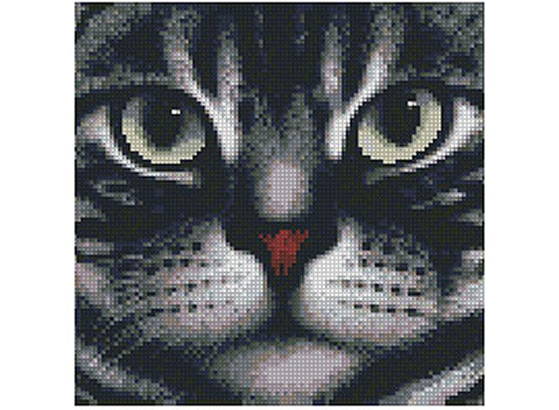 Стразы «Мордочка кота»Алмазная Живопись<br>Картины стразами бренда «Алмазная Живопись» это:<br><br>четко пропечатанная символьная схема;<br>качественный клеевой слой по всей поверхности холста;<br>большая палитра акриловых страз с 9 гранями, которые, отражая свет, создают эффект объемного изображения.<br>...<br><br>Артикул: SP-1085<br>Основа: Холст без подрамника<br>Сложность: средние<br>Размер: 26x25 см<br>Выкладка: Полная<br>Количество цветов: 7-15<br>Тип страз: Квадратные
