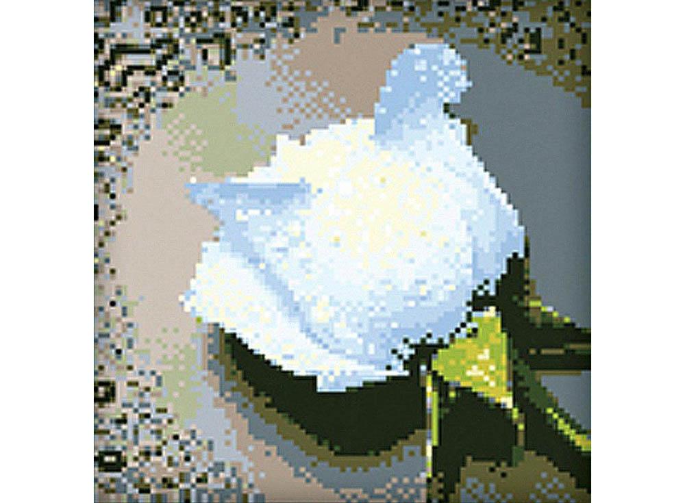 Алмазная вышивка «Белая роза»Алмазная Живопись<br>Картины стразами бренда «Алмазная Живопись» это:<br><br>четко пропечатанная символьная схема;<br>качественный клеевой слой по всей поверхности холста;<br>большая палитра акриловых страз с 9 гранями, которые, отражая свет, создают эффект объемного изображения.<br>...<br><br>Артикул: SP-24<br>Основа: Холст без подрамника<br>Сложность: средние<br>Размер: 22x24 см<br>Выкладка: Полная<br>Количество цветов: 17<br>Тип страз: Квадратные