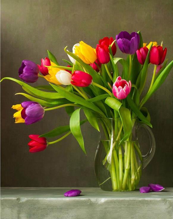 Стразы «Тюльпаны»Алмазная вышивка Гранни<br><br><br>Артикул: AG4619<br>Основа: Холст без подрамника<br>Сложность: сложные<br>Размер: 38x48 см<br>Выкладка: Полная<br>Количество цветов: 26<br>Тип страз: Квадратные