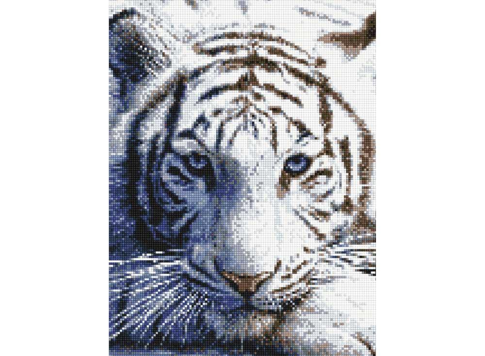 Алмазная вышивка «Тигриный взгляд»Алмазная вышивка<br><br>