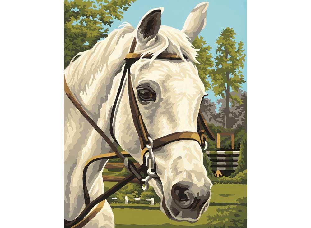 """Картина по номерам «Белая лошадь»Schipper (Шиппер)<br>Производитель наборов картин по номерам """"Schipper"""" - это исключительное качество всех составляющих. Особенностью этого бренда является то, что основа картины - высококачественный картон, покрытие которого имитирует натуральный холст. Краски """"Schipper"""" обл...<br><br>Артикул: 9240394<br>Основа: Картон<br>Сложность: сложные<br>Размер: 24x30 см<br>Количество цветов: 15<br>Техника рисования: Без смешивания красок"""