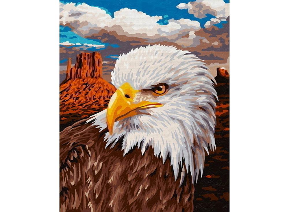 """Картина по номерам «Белоголовый орел»Schipper (Шиппер)<br>Производитель наборов картин по номерам """"Schipper"""" - это исключительное качество всех составляющих. Особенностью этого бренда является то, что основа картины - высококачественный картон, покрытие которого имитирует натуральный холст. Краски """"Schipper"""" обл...<br><br>Артикул: 9240665<br>Основа: Картон<br>Сложность: сложные<br>Размер: 24x30 см<br>Количество цветов: 25<br>Техника рисования: Без смешивания красок"""