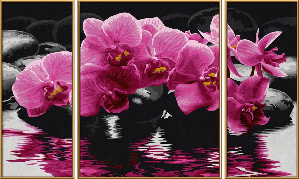 Картина по номерам «Орхидеи»