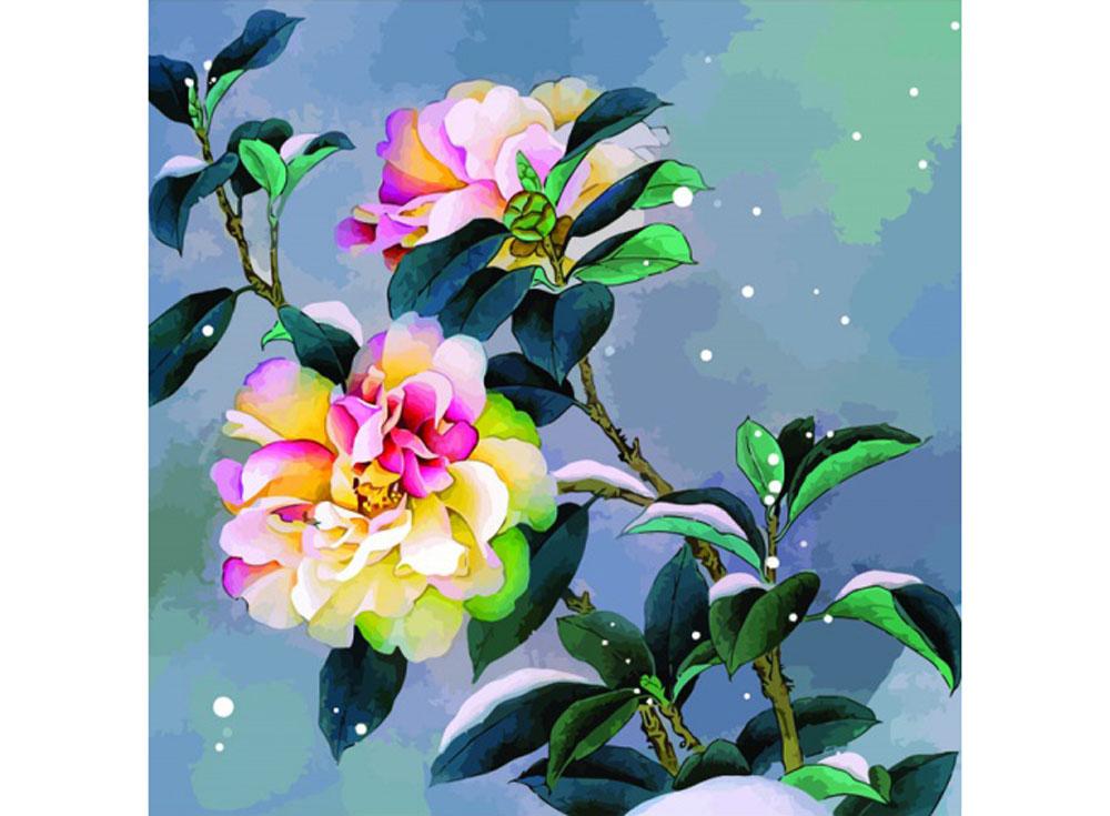 Картина по номерам «Снежный пион»Раскраски по номерам Color Kit<br><br><br>Артикул: CD010<br>Основа: Холст<br>Сложность: средние<br>Размер: 30x30 см<br>Количество цветов: 25<br>Техника рисования: Без смешивания красок