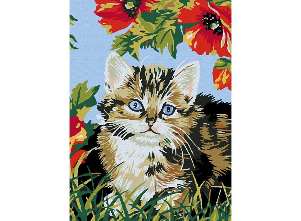 «Котенок в цветах»Раскраски по номерам Color Kit<br><br><br>Артикул: CE009<br>Основа: Холст<br>Сложность: сложные<br>Размер: 30x40 см<br>Количество цветов: 25<br>Техника рисования: Без смешивания красок