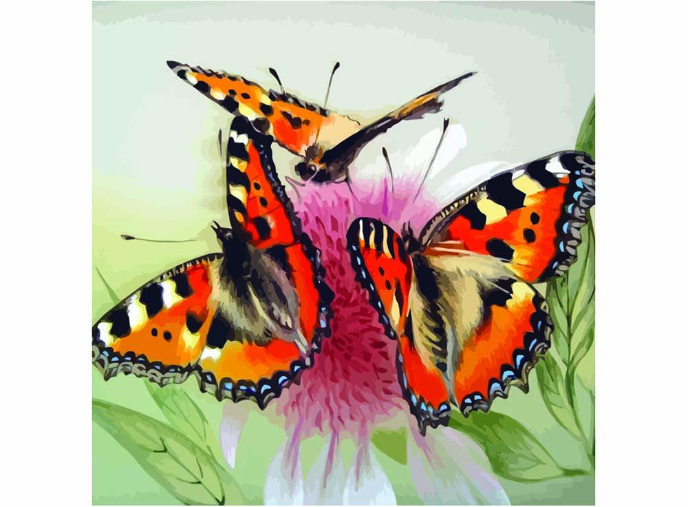Картина по номерам «Бабочки на цветке»Раскраски по номерам Color Kit<br><br><br>Артикул: CF109<br>Основа: Холст<br>Сложность: средние<br>Размер: 40x40 см<br>Количество цветов: 28<br>Техника рисования: Без смешивания красок