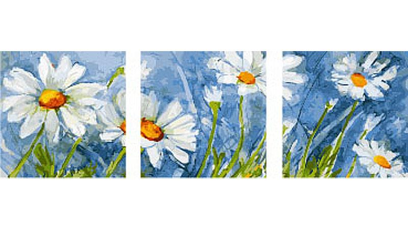 «Ромашки»Раскраски по номерам Color Kit<br><br><br>Артикул: P063<br>Основа: Холст<br>Сложность: сложные<br>Размер: 3 шт. 40х50 см<br>Количество цветов: 25<br>Техника рисования: Без смешивания красок