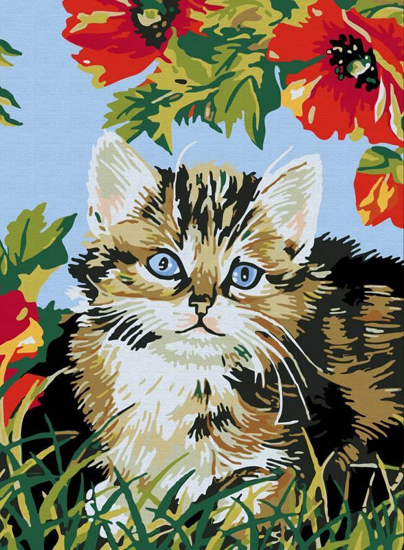 Картина по номерам «Котенок в цветах»Картины по номерам Белоснежка<br><br><br>Артикул: 009-CE<br>Основа: Холст<br>Сложность: средние<br>Размер: 30x40 см<br>Количество цветов: 18<br>Техника рисования: Без смешивания красок
