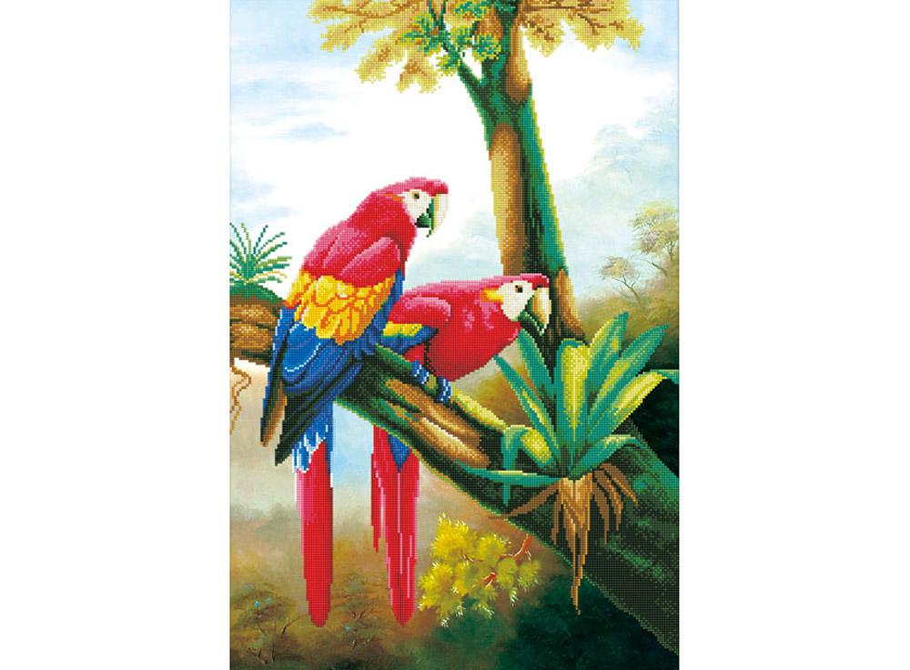 Стразы «Цветные попугаи»Алмазная вышивка Color Kit (Колор Кит)<br><br><br>Артикул: 80118<br>Основа: Холст без подрамника<br>Сложность: средние<br>Размер: 44x67<br>Выкладка: Частичная<br>Количество цветов: 32<br>Тип страз: Круглые непрозрачные (акриловые)