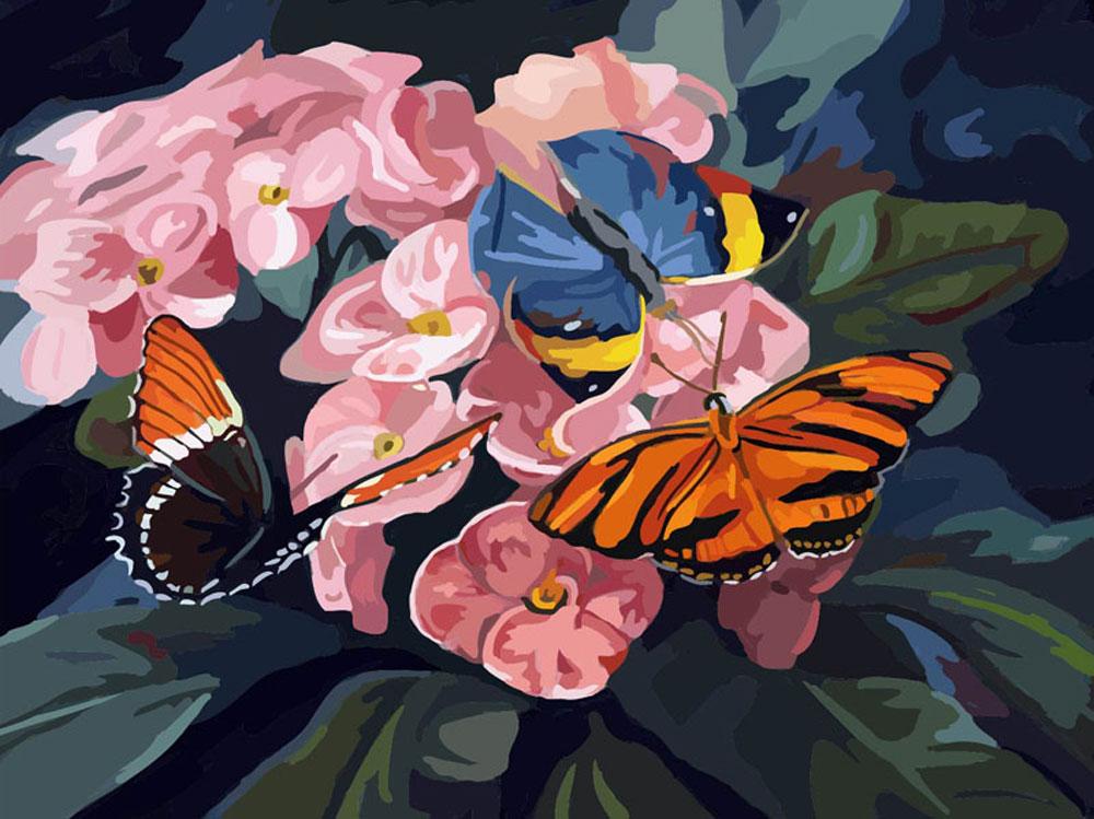 «Бабочки на цветах»Картины по номерам Белоснежка<br><br><br>Артикул: 806-AB-C<br>Основа: Цветной холст<br>Сложность: средние<br>Размер: 40x50<br>Количество цветов: 21<br>Техника рисования: Без смешивания красок