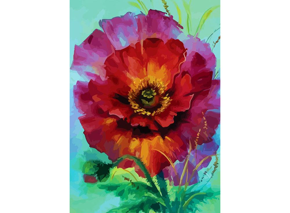 «Мак»Раскраски по номерам Color Kit<br><br><br>Артикул: CE202<br>Основа: Холст<br>Сложность: сложные<br>Размер: 30x40 см<br>Количество цветов: 25<br>Техника рисования: Без смешивания красок