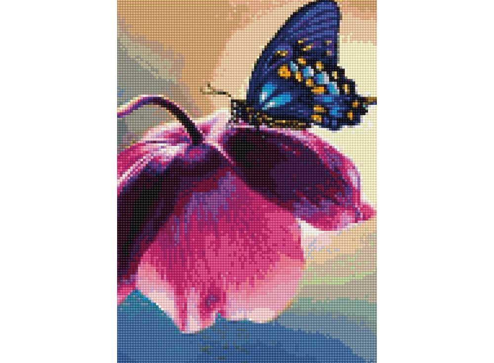 Алмазная вышивка Цветной Стразы «Летнее настроение» D608