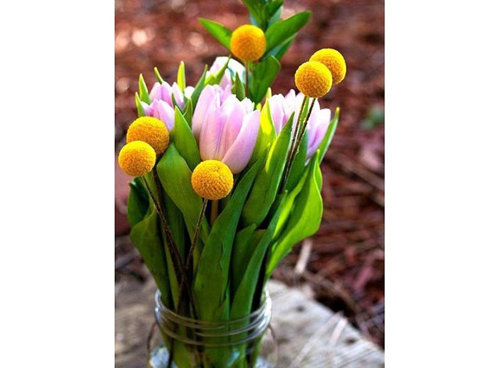 Алмазная вышивка «Весна»Яркие Грани<br><br><br>Артикул: DS320<br>Основа: Холст без подрамника<br>Сложность: средние<br>Размер: 37x50 см<br>Выкладка: Полная<br>Количество цветов: 55<br>Тип страз: Квадратные