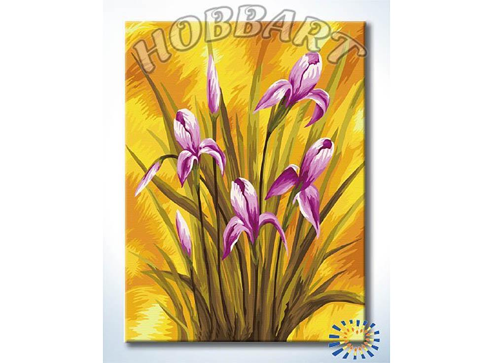 Картина по номерам «Ирисы на золотом»Hobbart<br><br><br>Артикул: HB3040134<br>Основа: Холст<br>Сложность: средние<br>Размер: 30x40 см<br>Количество цветов: 22<br>Техника рисования: Без смешивания красок