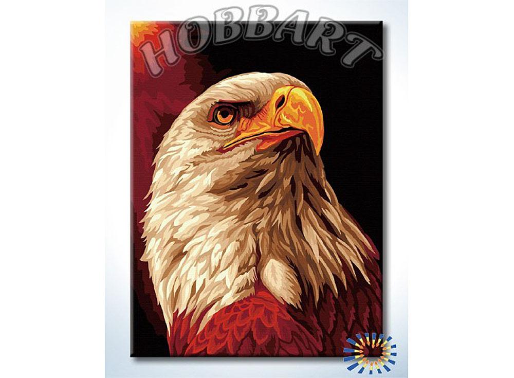 Картина по номерам «Гордый орел»Hobbart<br><br><br>Артикул: HB3040140<br>Основа: Холст<br>Сложность: сложные<br>Размер: 30x40 см<br>Количество цветов: 19<br>Техника рисования: Без смешивания красок