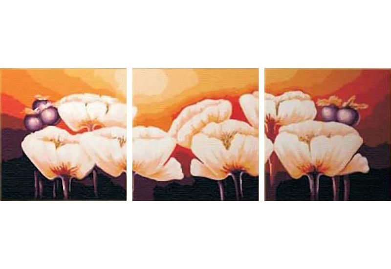 «Белые цветы»Раскраски по номерам Color Kit<br><br><br>Артикул: P001<br>Основа: Холст<br>Сложность: сложные<br>Размер: 3 шт. 40х40 см<br>Количество цветов: 25<br>Техника рисования: Без смешивания красок