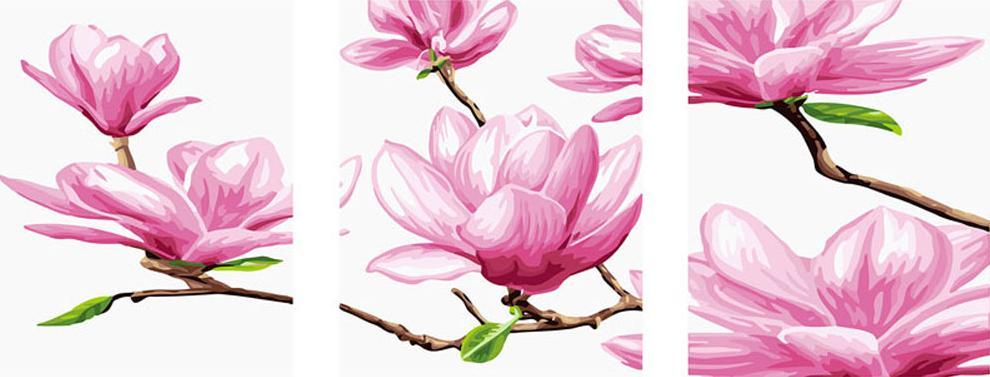 Картина по номерам «Магнолия»Раскраски по номерам Color Kit<br><br><br>Артикул: P010<br>Основа: Холст<br>Сложность: средние<br>Размер: 3 шт. 40x50 см<br>Количество цветов: 23<br>Техника рисования: Без смешивания красок