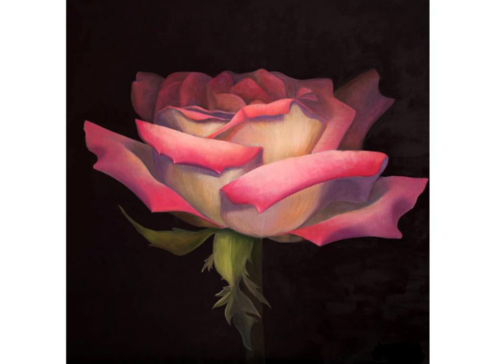 Папертоль «Роза рассвет»