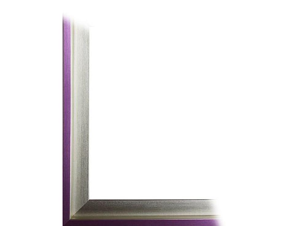 Рамка без стекла для картин «Alisa»Багетные рамки<br>Для картин на картоне. В комплект входит: рамка, задняя подложка, крючок-вешалка. Стекло в комплект не входит. При необходимости приобретайте стекло отдельно.<br><br>Артикул: 0060-50-3155<br>Размер: 50x70 см<br>Цвет: Серебро и фиолетовый<br>Ширина: 30<br>Материал багета: Пластик