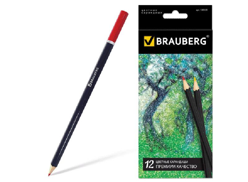 Набор цветных карандашей (12 цветов)Аксессуары для книг-раскрасок<br><br><br>Артикул: 180539