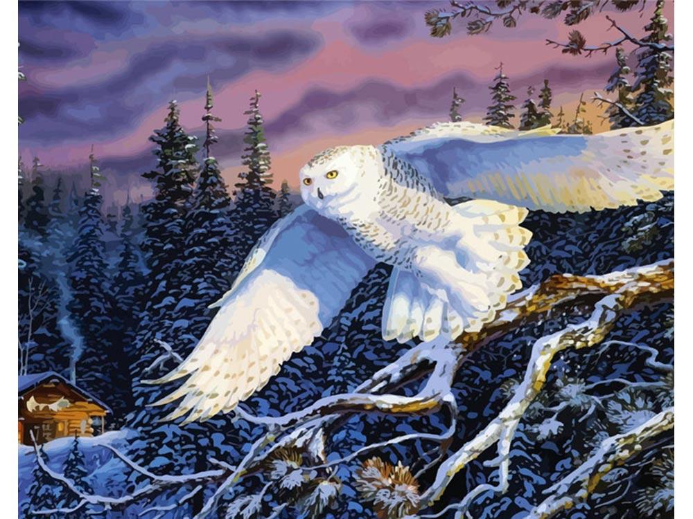 «Зимней ночью» Терри ДоутиРаскраски по номерам Color Kit<br><br><br>Артикул: mmc5030<br>Основа: Холст<br>Сложность: сложные<br>Размер: 50x65 см<br>Количество цветов: 28<br>Техника рисования: Без смешивания красок