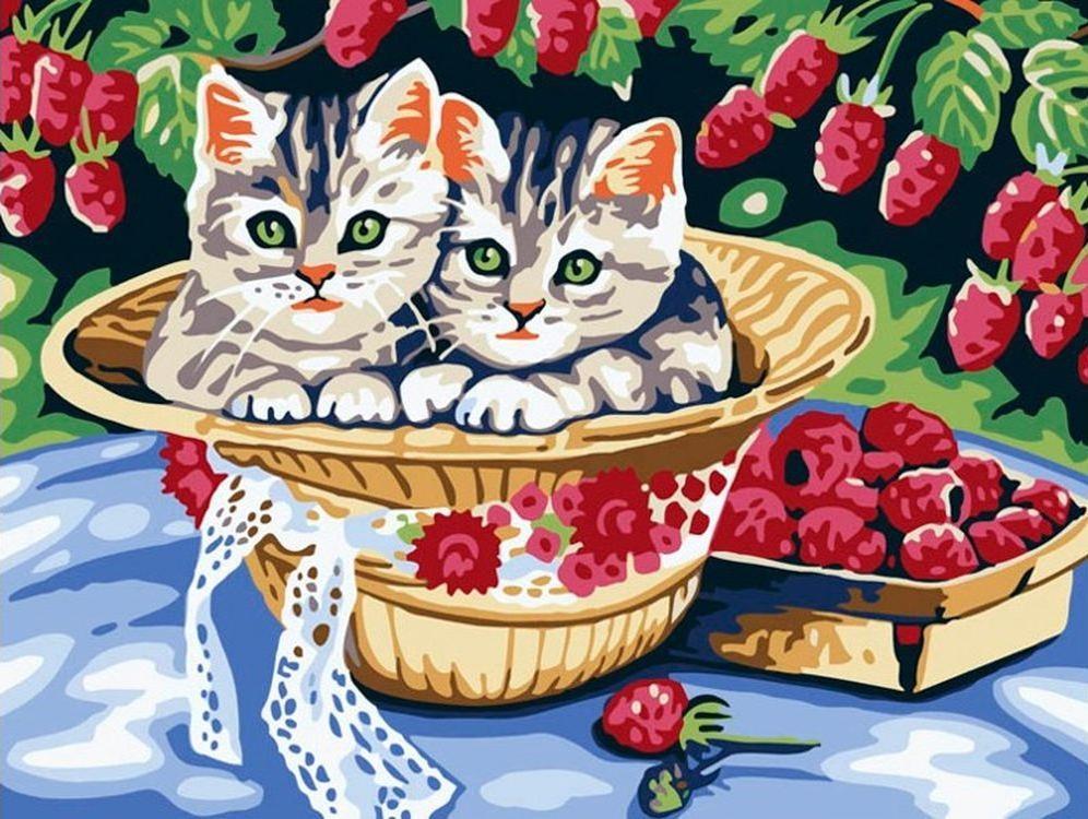 «Котята в саду»Картины по номерам Белоснежка<br><br><br>Артикул: 013-CE<br>Основа: Холст<br>Сложность: средние<br>Размер: 30x40 см<br>Количество цветов: 16<br>Техника рисования: Без смешивания красок