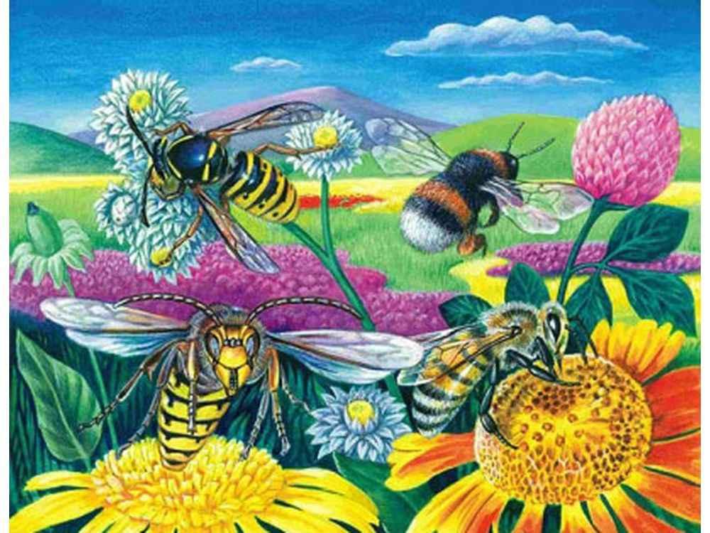 Алмазная вышивка «Пчелы и клевер»Алмазная вышивка Color Kit (Колор Кит)<br><br><br>Артикул: 10021<br>Основа: Холст без подрамника<br>Сложность: средние<br>Размер: 40x50 см<br>Выкладка: Частичная<br>Количество цветов: 29<br>Тип страз: Круглые непрозрачные (акриловые)