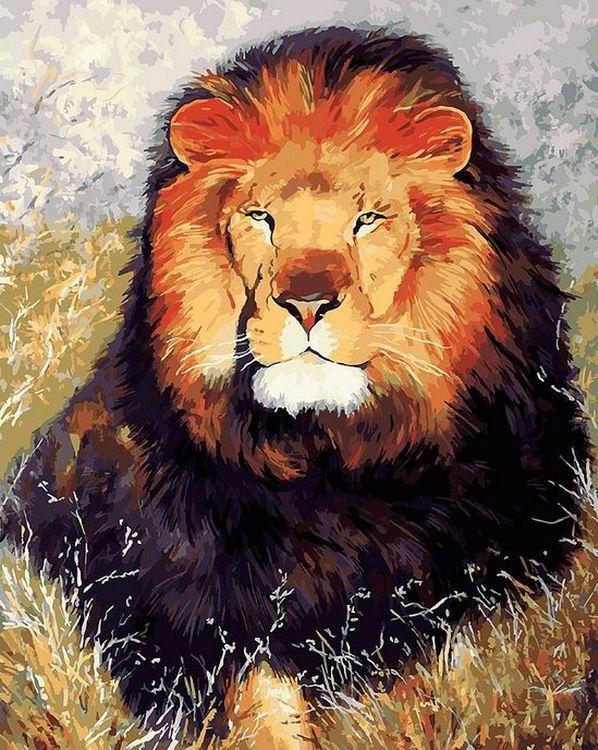 «Царь зверей»Картины по номерам Белоснежка<br><br><br>Артикул: 154-AB<br>Основа: Холст<br>Сложность: очень сложные<br>Размер: 40x50 см<br>Количество цветов: 34<br>Техника рисовани: Без смешивани красок
