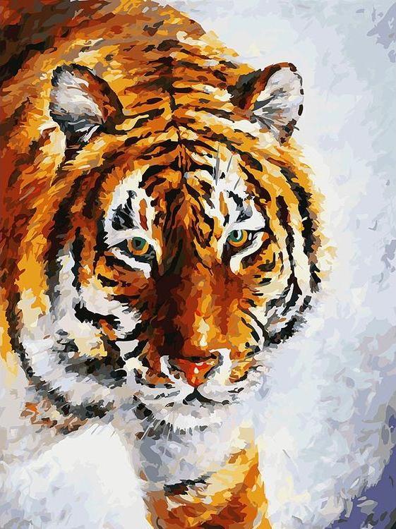 Картина по номерам «Тигр на снегу» Леонида АфремоваКартины по номерам Белоснежка<br><br><br>Артикул: 780-AS<br>Основа: Холст<br>Сложность: очень сложные<br>Размер: 30x40 см<br>Количество цветов: 35<br>Техника рисования: Без смешивания красок