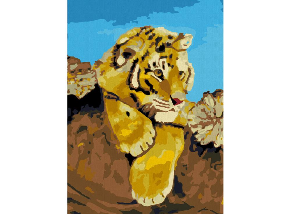 «Тигрёнок»Раскраски по номерам Color Kit<br><br><br>Артикул: CE006<br>Основа: Холст<br>Сложность: сложные<br>Размер: 30x40 см<br>Количество цветов: 19<br>Техника рисования: Без смешивания красок