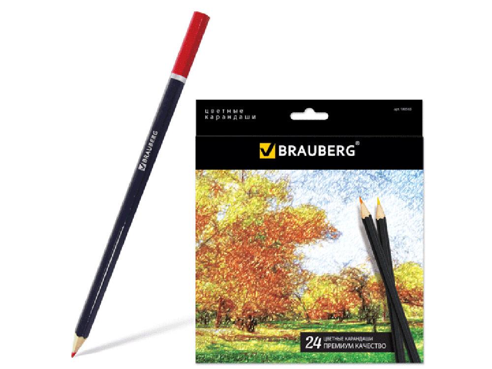 Набор цветных карандашей (24 цвета)Аксессуары для книг-раскрасок<br>Карандаши цветные (24 цвета) высшего качества:<br> - диаметр грифеля 3 мм;<br> - высокосортная древесина;<br> - шестигранный корпус;<br> - легко затачиваются;<br> - картонная коробка с европодвесом.<br> <br> Отличное качество грифеля гарантирует равномерную насыщенност...<br><br>Артикул: 180565