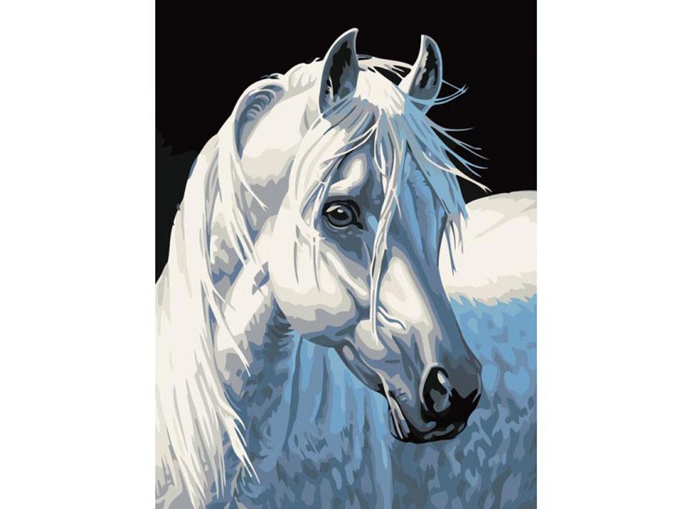 «Белая лошадь»Картины по номерам Белоснежка<br><br><br>Артикул: 230-CE<br>Основа: Холст<br>Сложность: легкие<br>Размер: 30x40<br>Количество цветов: 14<br>Техника рисования: Без смешивания красок