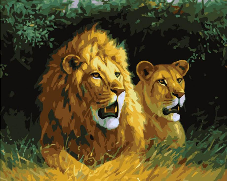 Картина по номерам «Львы на отдыхе»Картины по номерам Белоснежка<br><br><br>Артикул: 400-CG<br>Основа: Холст<br>Сложность: средние<br>Размер: 40x50 см<br>Количество цветов: 22<br>Техника рисования: Без смешивания красок
