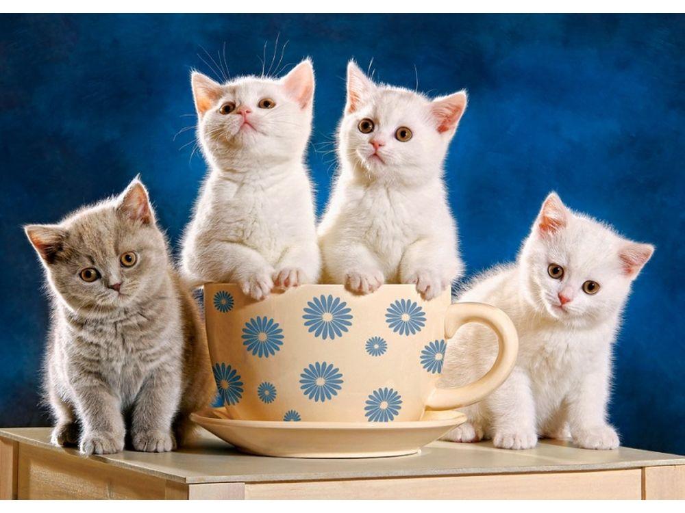Пазлы «Четыре котенка»Пазлы от производителя Castorland<br>Пазл - игра-головоломка, мозаика, состоящая из множества фрагментов, различающихся по форме.<br> По мнению психологов, игра в пазлы способствует развитию логического мышления, внимания, воображения и памяти. Пазлы хороши для всех возрастов - и ребенка-дошко...<br><br>Артикул: B52042<br>Размер: 47x33 см