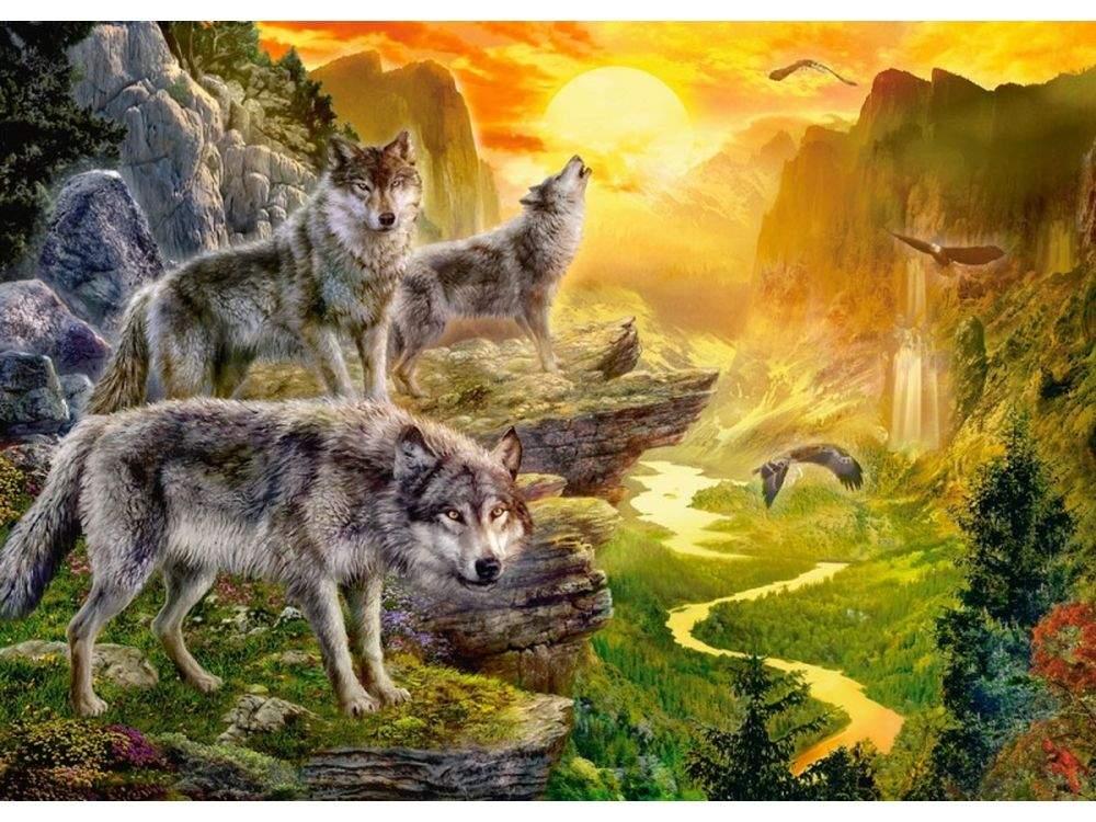 Пазлы «Долина волков»Пазлы от производителя Castorland<br>Пазл - игра-головоломка, мозаика, состоящая из множества фрагментов, различающихся по форме.<br> По мнению психологов, игра в пазлы способствует развитию логического мышления, внимания, воображения и памяти. Пазлы хороши для всех возрастов - и ребенка-дошко...<br><br>Артикул: B52073<br>Размер: 47x33 см