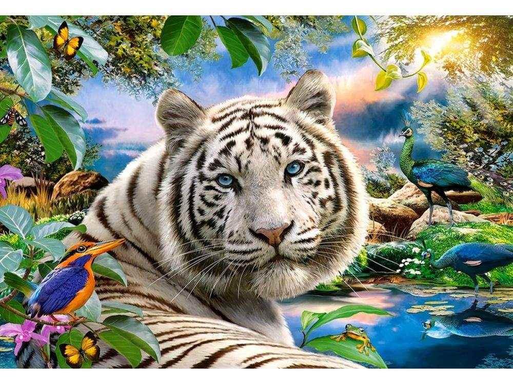 Пазлы «Тигр»Пазлы от производителя Castorland<br>Пазл - игра-головоломка, мозаика, состоящая из множества фрагментов, различающихся по форме.<br> По мнению психологов, игра в пазлы способствует развитию логического мышления, внимания, воображения и памяти. Пазлы хороши для всех возрастов - и ребенка-дошко...<br><br>Артикул: C151318<br>Размер: 68x47 см