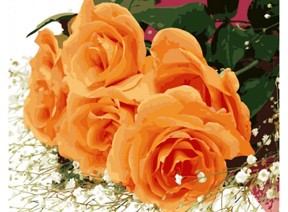 «Розы для Вас!»Раскраски по номерам Color Kit<br><br><br>Артикул: CG410<br>Основа: Холст<br>Сложность: средние<br>Размер: 40x50 см<br>Количество цветов: 24<br>Техника рисования: Без смешивания красок