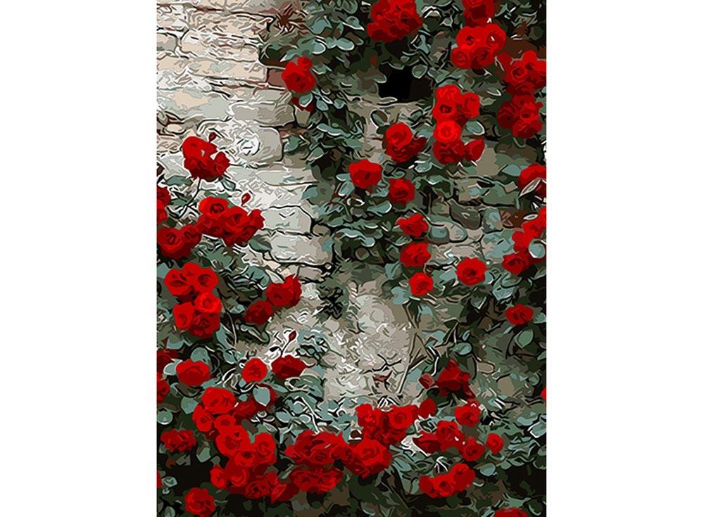 Картина по номерам «Дикая роза»Раскраски по номерам Color Kit<br><br><br>Артикул: cg424<br>Основа: Холст<br>Сложность: средние<br>Размер: 40x50 см<br>Количество цветов: 24<br>Техника рисования: Без смешивания красок