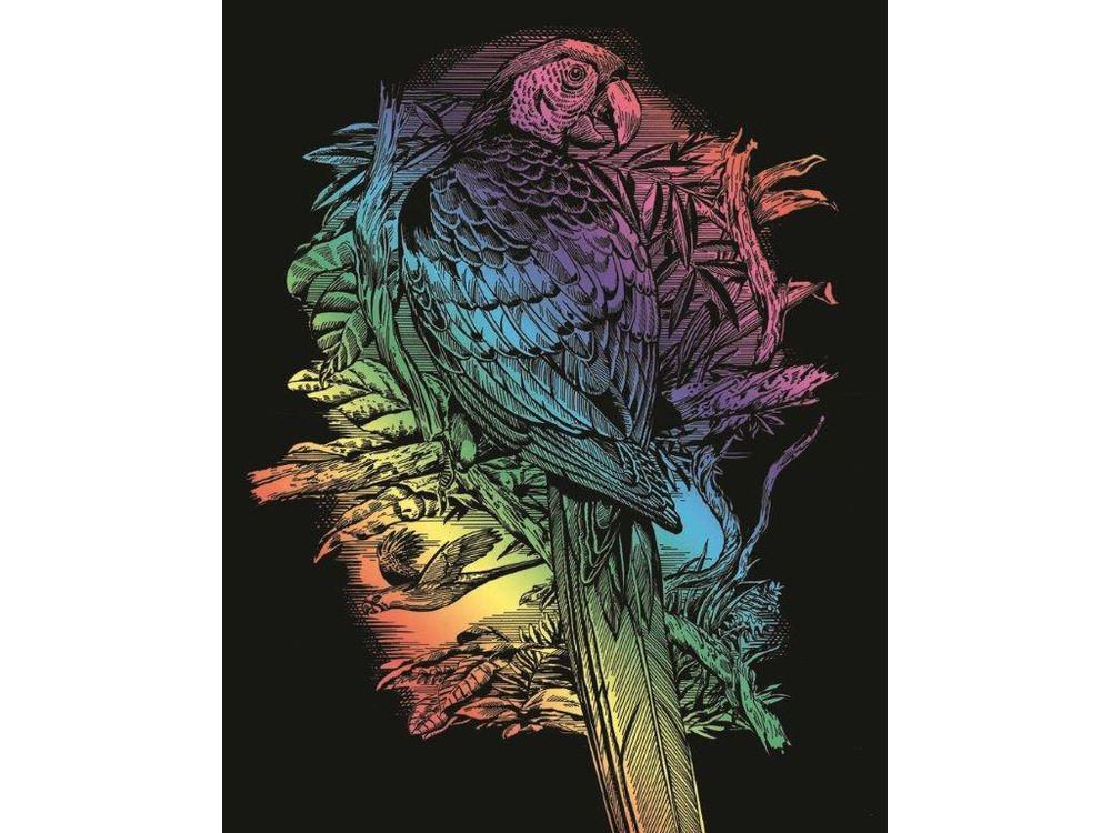 Гравюра «Попугай»