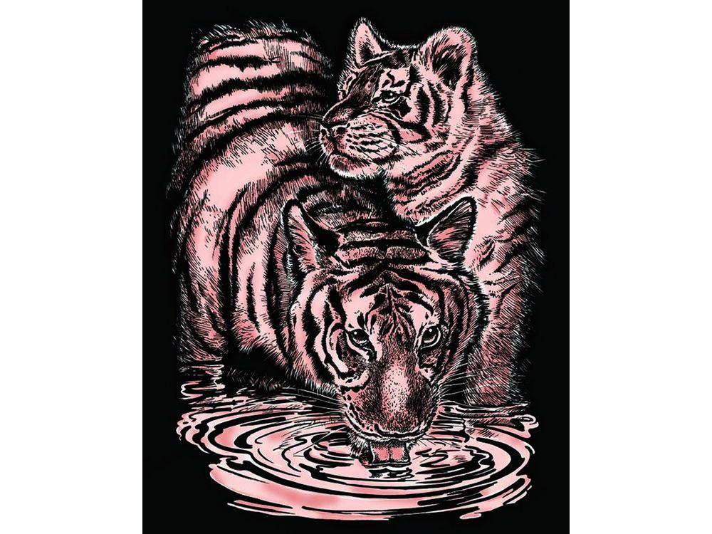 Гравюра «Тигры»