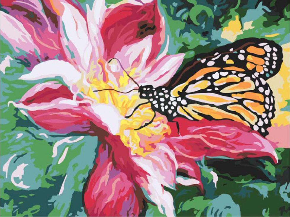 «Сладкий нектар»Картины по номерам Белоснежка<br><br><br>Артикул: 736-AS<br>Основа: Холст<br>Сложность: средние<br>Размер: 30x40 см<br>Количество цветов: 22<br>Техника рисования: Без смешивания красок