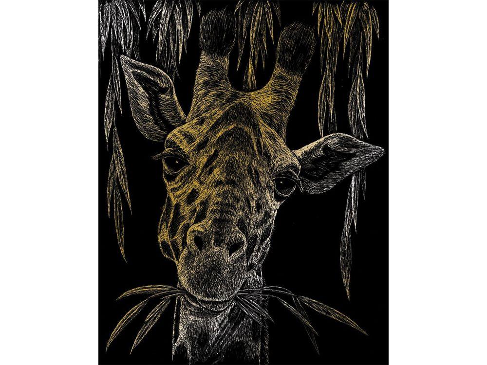 Гравюра «Жираф»Гравюры<br>Красивые образы, созданные при помощи гравировки, привлекают и техникой исполнения, и результатом.<br><br> Основа - плотный картон со специальным черным матовым покрытием и с нанесенным на него контуром-наброском. Аккуратно сцарапывайте покрытие с наброска с по...<br><br>Артикул: GOLF24<br>Размер: 20,3x25,4<br>Цвет: Золото