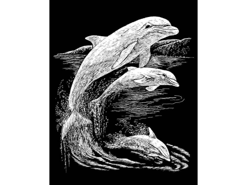 Гравюра «Дельфины»Гравюры<br>Красивые образы, созданные при помощи гравировки, привлекают и техникой исполнения, и результатом.<br><br> Основа - плотный картон со специальным черным матовым покрытием и с нанесенным на него контуром-наброском. Аккуратно сцарапывайте покрытие с наброска с по...<br><br>Артикул: SILF11<br>Размер: 20,3x25,4<br>Цвет: Серебро