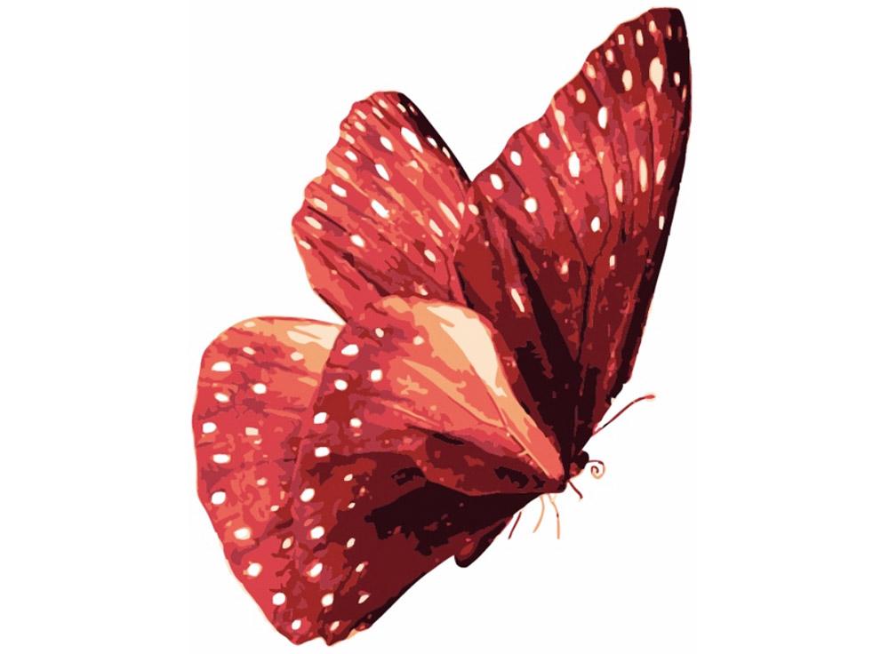 Картина по номерам «Бабочка»Цветной (Premium)<br><br><br>Артикул: MC1006_Z<br>Основа: Холст<br>Сложность: легкие<br>Размер: 20x30 см<br>Количество цветов: 9<br>Техника рисования: Без смешивания красок